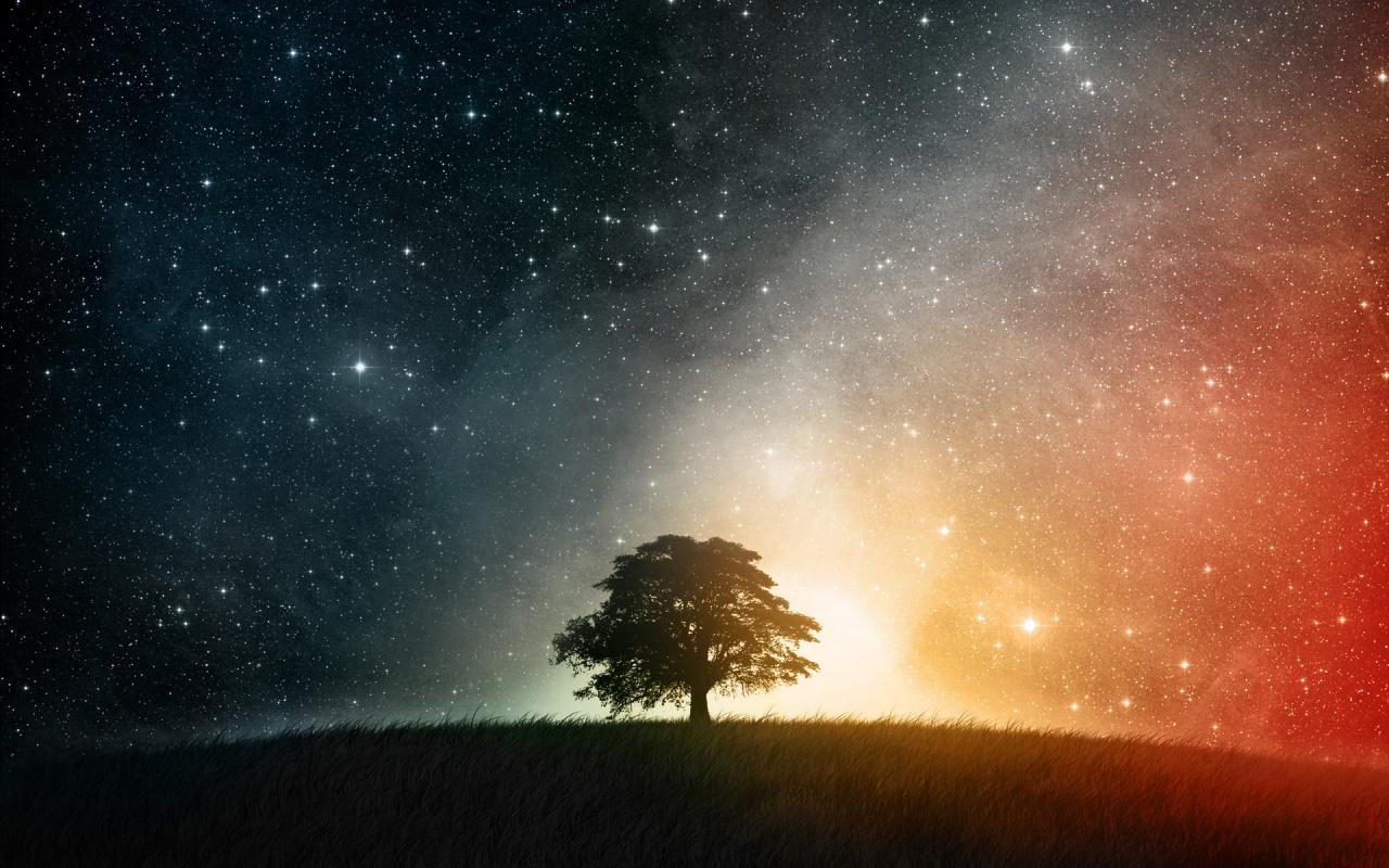 Het organische Universum