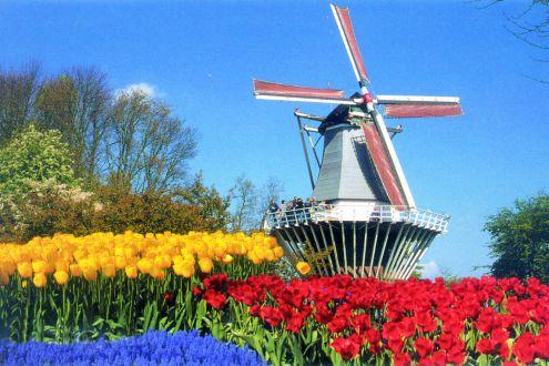 Trots op Nederland?