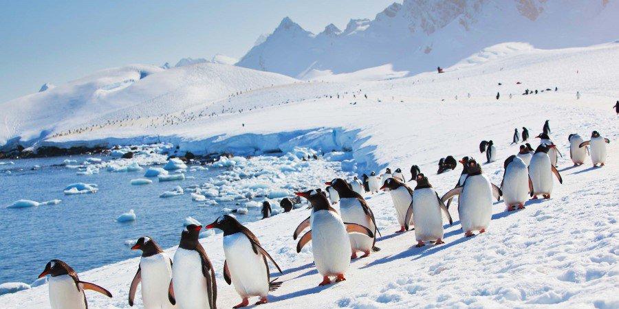 """De ComplotConcurrent – Uitzending 17 """"Antarctica Onthullingen"""" (21-6-2018)"""